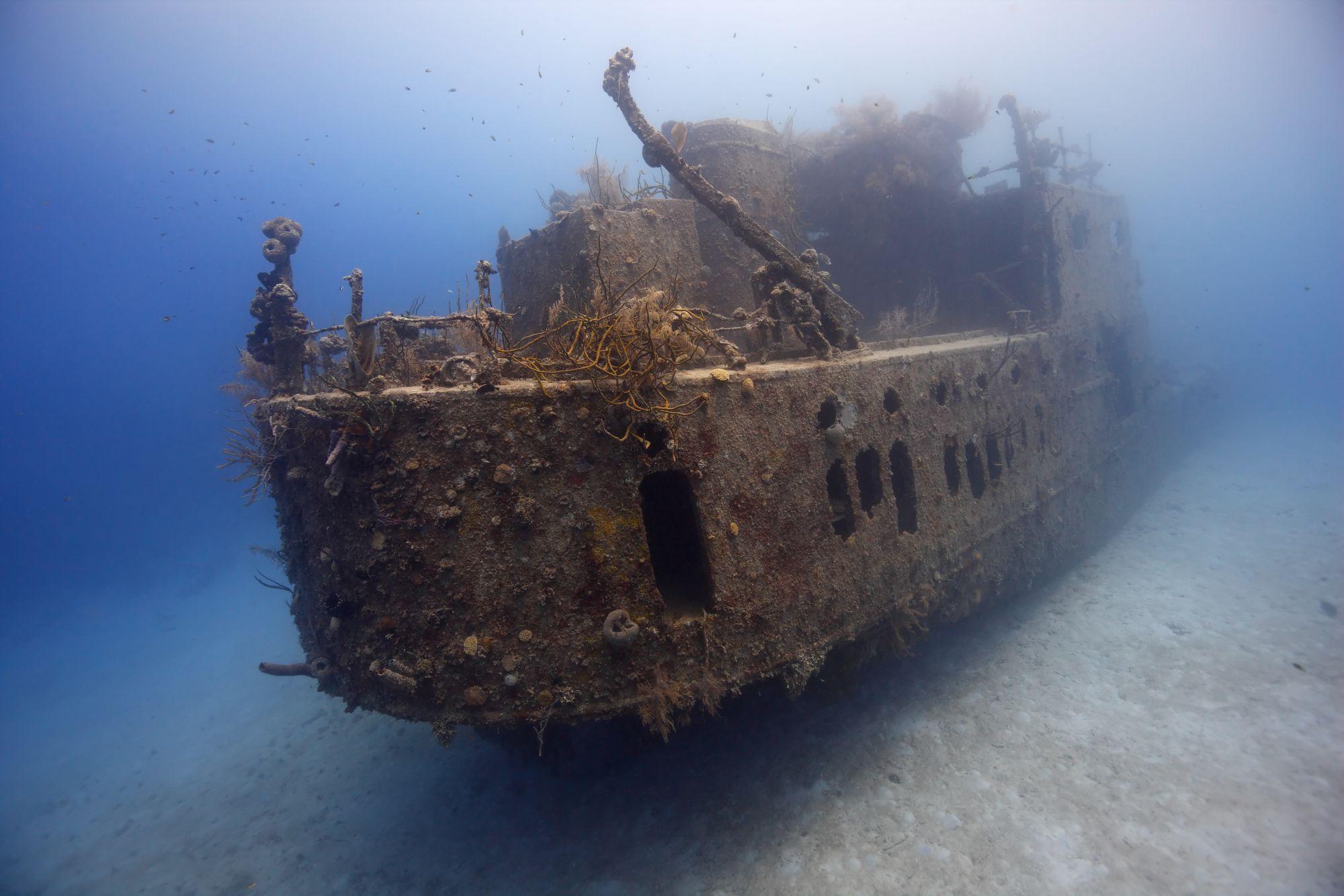 Scuba diving in prince albert wreck, - dive site - divebooke.