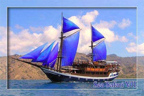 Sea Safari 7 Liveaboard