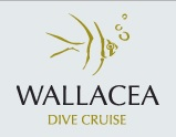 Wallacea Dive Cruises