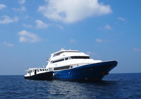 Maldives Master (Blue Voyager) Liveaboard