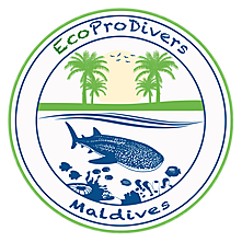 EcoPro Divers