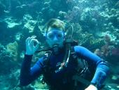 Aquastars Diving Centers & Safaris (Hurghada, Sunny Days El Palacio)