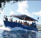 Bleu Marine Reunion