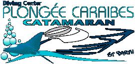 Plongée Caraibes Catamaran