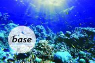 BASE Diving Centre