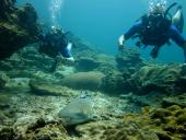 Andaman Dive Adventure Lanta