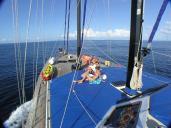 Sea Star Liveaboard
