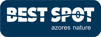 Best Spot Azores Dive Center