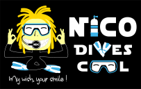 Nico Dives Cool