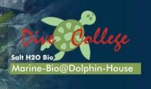 Dive College