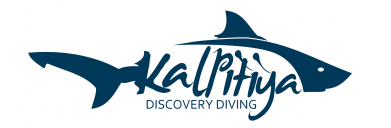 Kalpitiya Discovery Diving