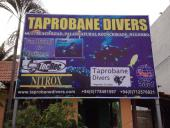 Taprobane Divers (Negombo)