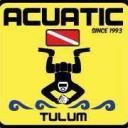 Acuatic Tulum