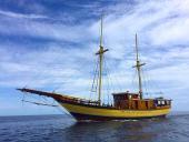 Davy Jones Liveaboard