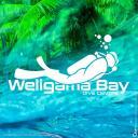 Weligama Bay Dive Center