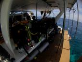 Flying Dolphin III Liveaboard