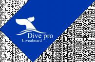 Dive Pro Liveaboard