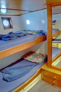Twin Berth Cabin (Bunkstyle)