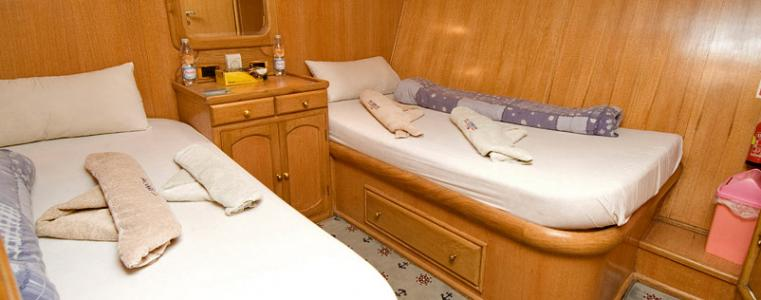 Twin Cabin (Lower Deck)
