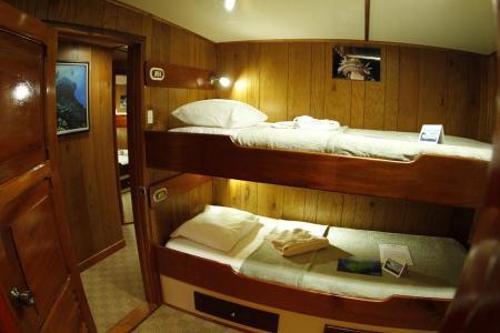 Twin Cabin (Bunk-style)