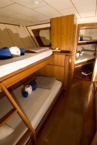 Standard Quad Cabin