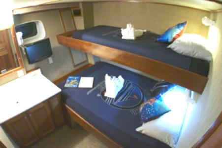 Deluxe Stateroom (#2, 3, 4, 5, 6, 7, 8)