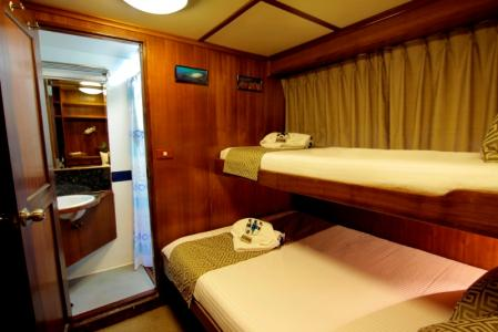 Deluxe Cabin (Double & Single bed)