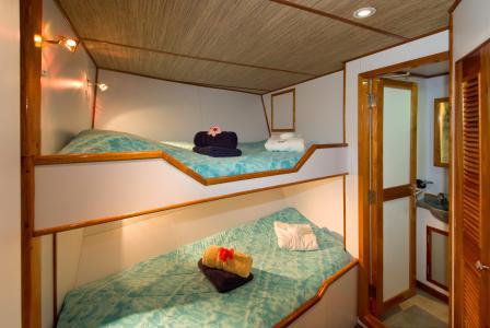 Deluxe Cabin Upper Deck (# 9)