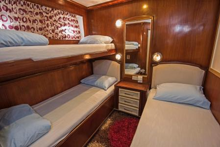 Twin Bunk-style Bed Cabin (Lower Deck)