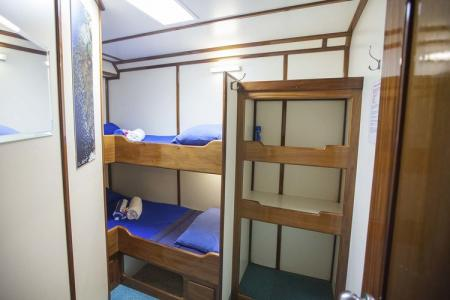 Standard Bunk Bed Cabin