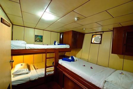 Standard Triple Cabin