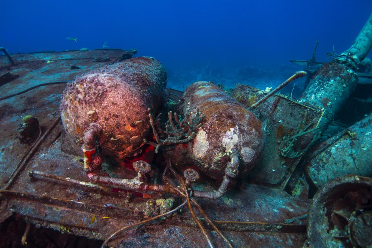 Scuba Diving in Willaurie Wreck, Bahamas - Dive Site ...