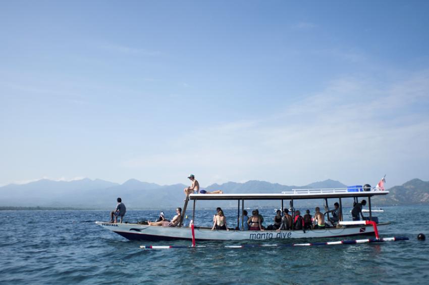Manta dive gili air gili air indonesia - Gili air manta dive ...
