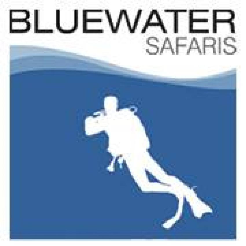 Bluewater Safaris